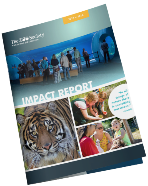 Cover of Impact Report from The Zoo Society