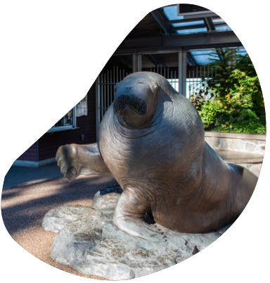 A statue of a walrus stands at the entrance to the Point Defiance Zoo and Aquarium.